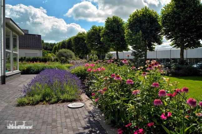 Bloementuin ulft mps hoveniers for Www bloem en tuin nl